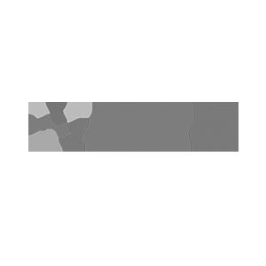 Denamicon